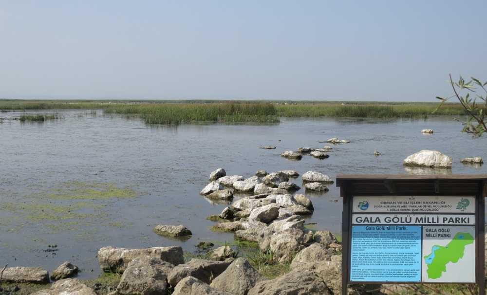 Gala Gölü'nün su kalitesi incelenip, takip altına alınıyor