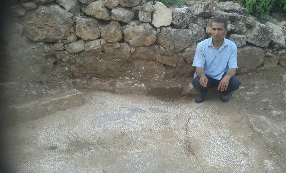 Adıyaman'da Taban Mozaikler Bulundu