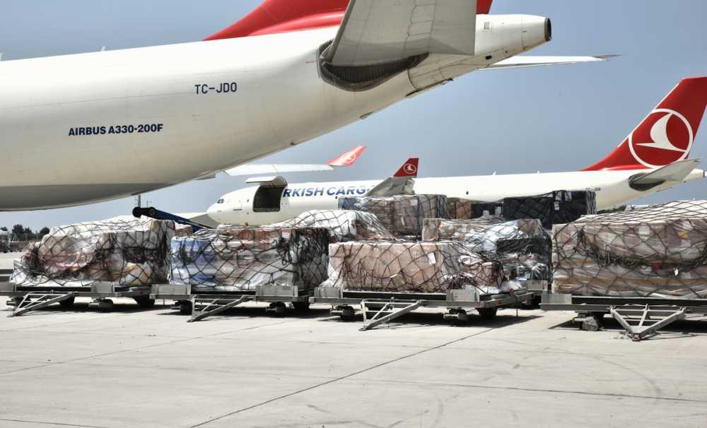 Türk balıkları özel uçak konforuyla İzmir'den New York'a uçacak